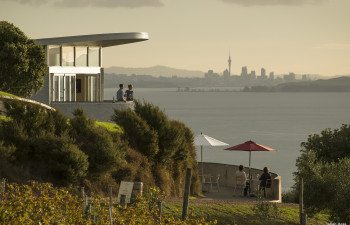 H235-Te-Whau-Vineyard-Waiheke-Island-Auckland-Julian-Apse-ret