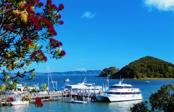 02paihia-wharf-bay-of-islands