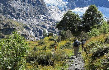 Eco-Wanaka-Adventures-Rob-Roy-Glacier-head-of-valley-cirque