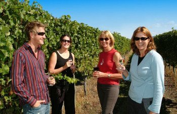 Taste-Marlborough-Wine-Touring-(69)