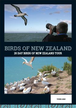 birds-of-new-zealand-web-button