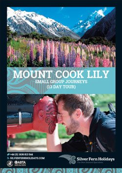 mount-cook-lilly-itinerary-web-button
