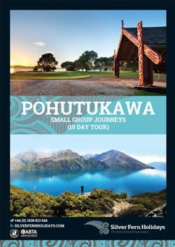 pohutukawa-itinerary-web-button