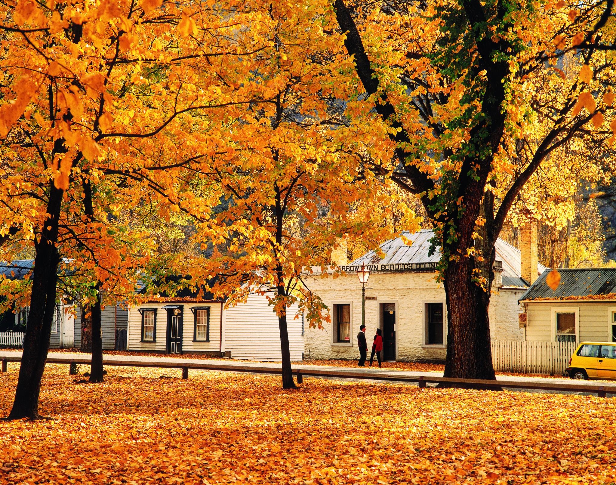 Autumn colours Arrowtown