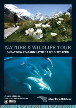 sfh-new-zealand-wildlife-itinerary-web-button