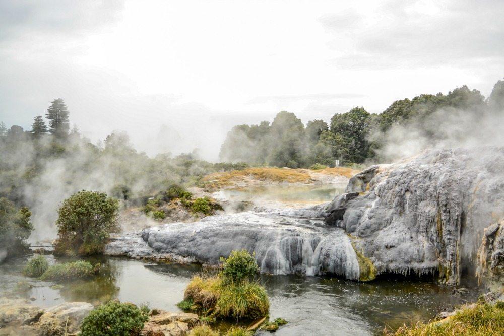 Te Puia thermal pools in Rotorua, New Zealand