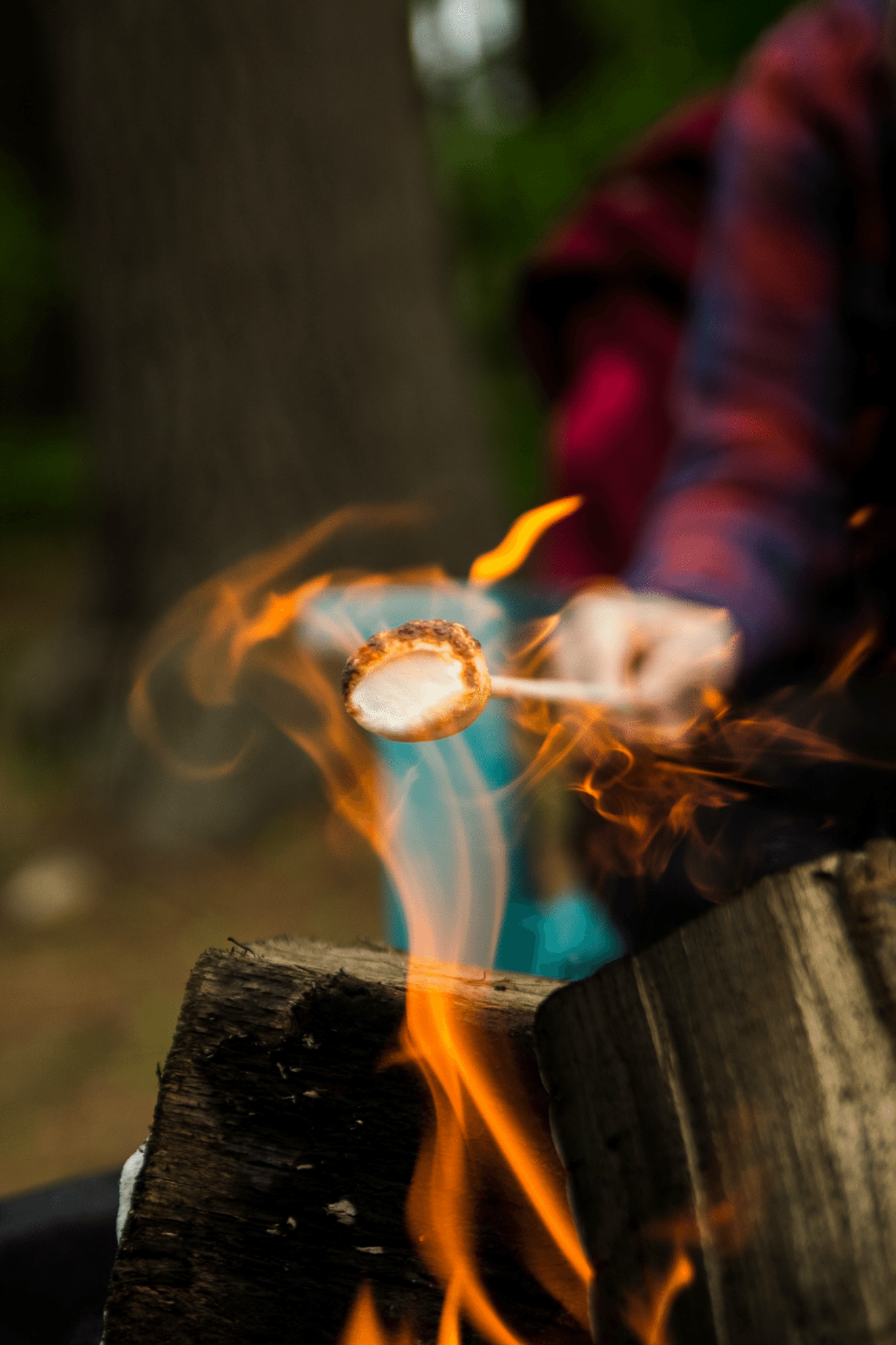 Toasting marshmallows over an open log fire