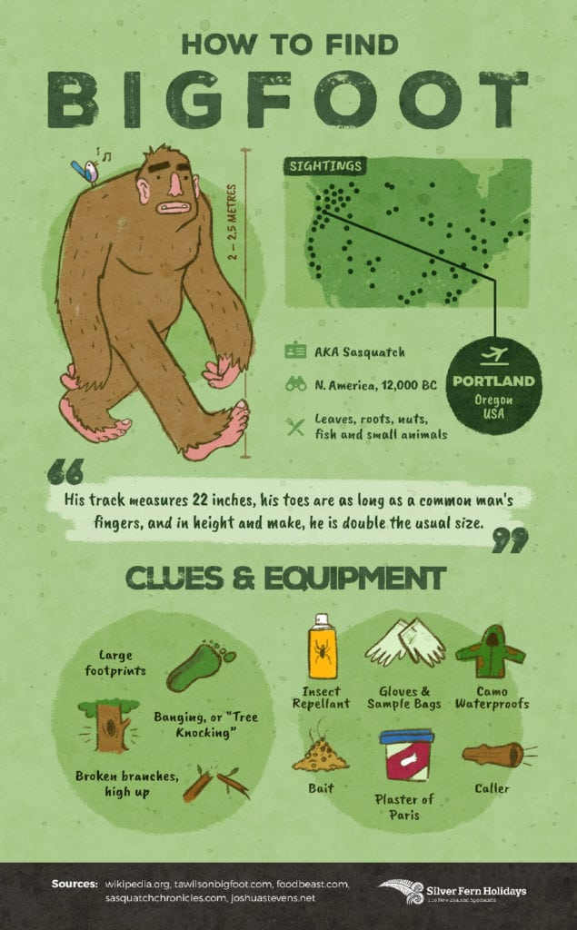 A flash card depicting an illustration of bigfoot with a map of where to find him, and what to pack and look for