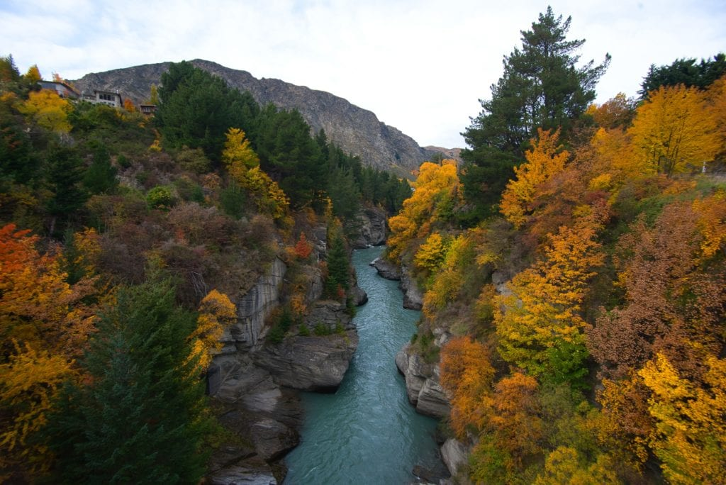 Looking down on to a river in Arrowtown with autumnal tress on either bank