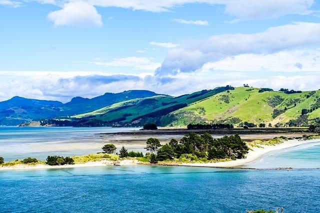 Dunedin Coast